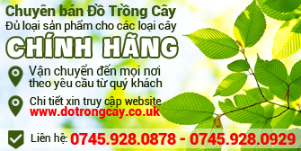 dat trong cay Anh Quoc
